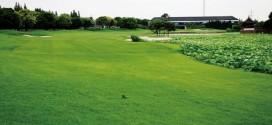 上海ゴルフクラブ(嘉定)【上海高爾夫倶楽部】 MAP上海-2
