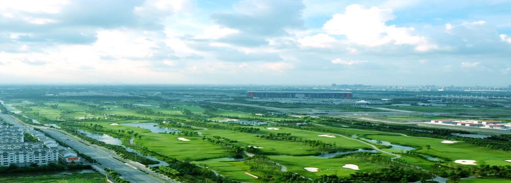 上海バーディー